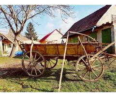 Streitwagen / Pferdekutsche